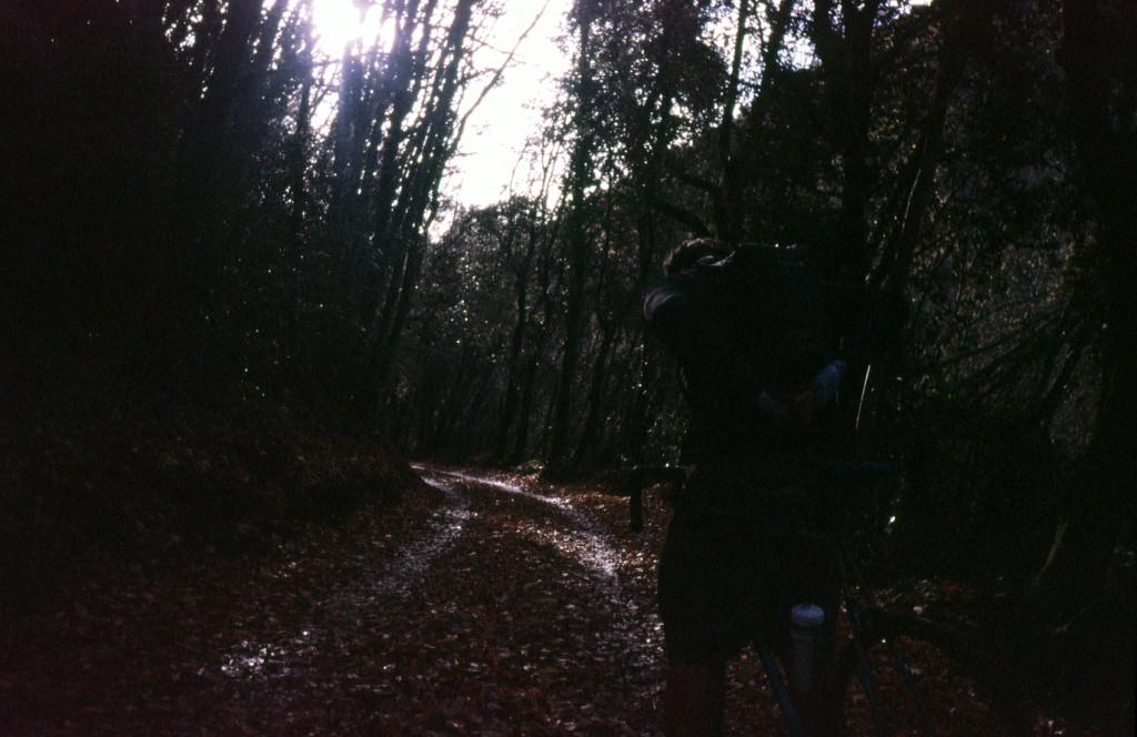 SCRIV_film-09
